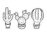 Dibuix de 3 mini cactus per pintar