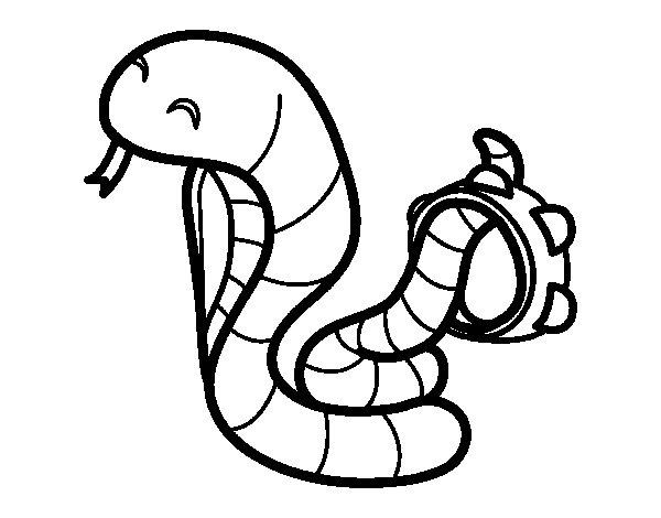 Dibuix de Cobra amb pandereta per Pintar on-line