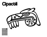 Dibuix de Els dies asteques: el caiman Cipactli per pintar