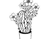 Dibuix de Flors de cactus per pintar