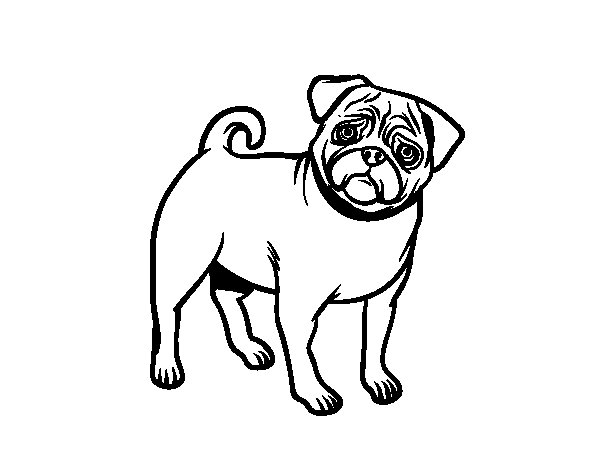 Dibuix de Gos Carlí per Pintar on-line