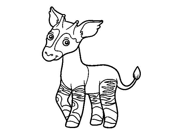 Dibuix de Ocapi per Pintar on-line