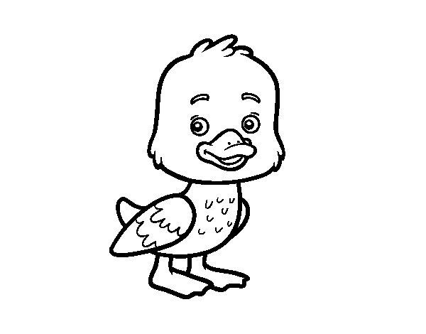 Dibuix de Un aneguet per Pintar on-line