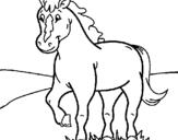Dibuix Cavall pintat per cavall