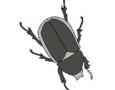 Dibuix Escarabat pintat per lola