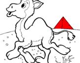 Dibuix Camell pintat per Mari