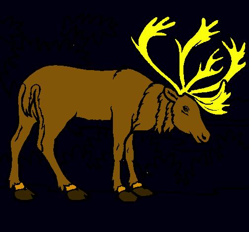Dibuix Ant pintat per didac2005