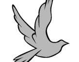 Dibuix Colom de la pau al vol  pintat per arnau