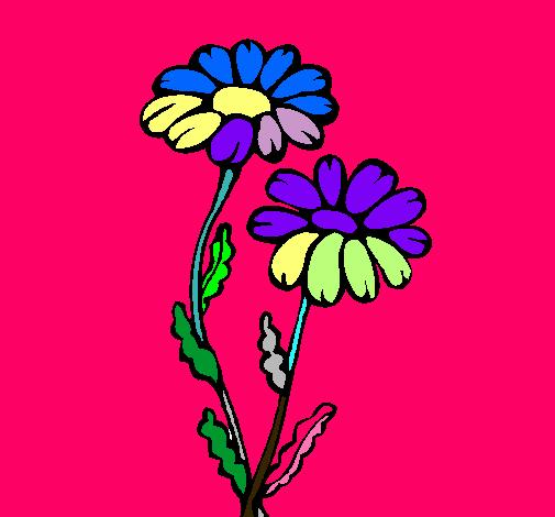 Dibuix Margarides pintat per goga