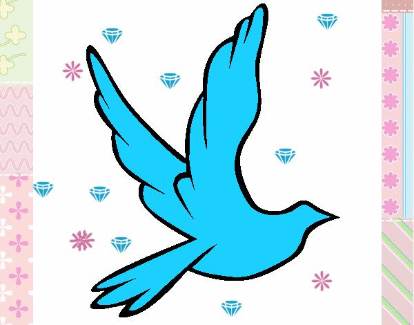 Colom de la pau al vol