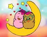 Ocells enamorats