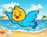 Un ocell