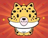 Cria de guepard