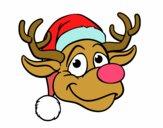 Cara de ren Rudolph