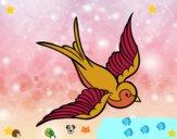 Tatuatge d'ocell