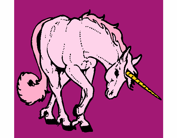 Unicorn brau