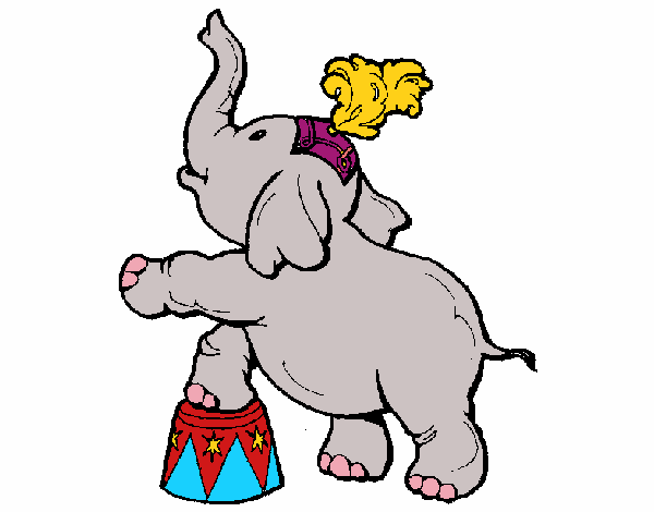 hatchico elefant