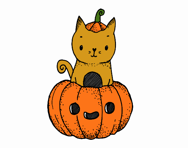 Un gatet de Halloween